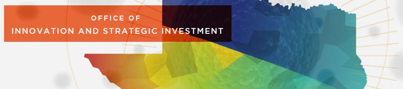 Innovation Strategic Investment